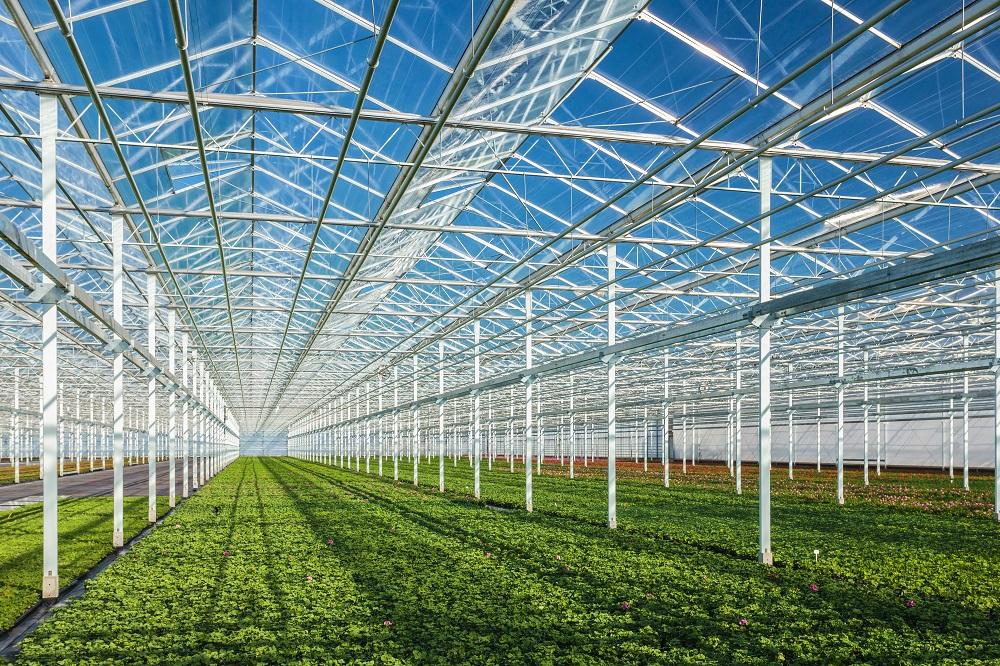 NL AIC Landbouw en voeding